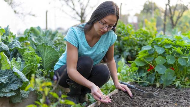 Jelena Popović u svojoj bašti © Tanja Prolić