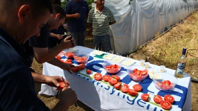 Pogledajte kako je bilo na Syngentinom Danu polja paradajza u Navalinu kod Leskovca
