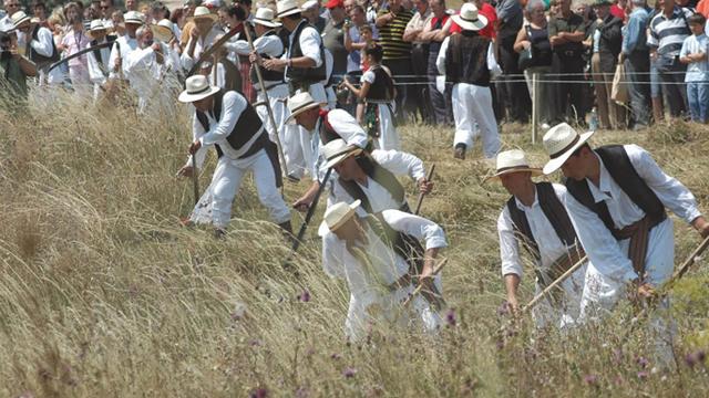 Kako će ove godine izgledati kosidba na Rajcu