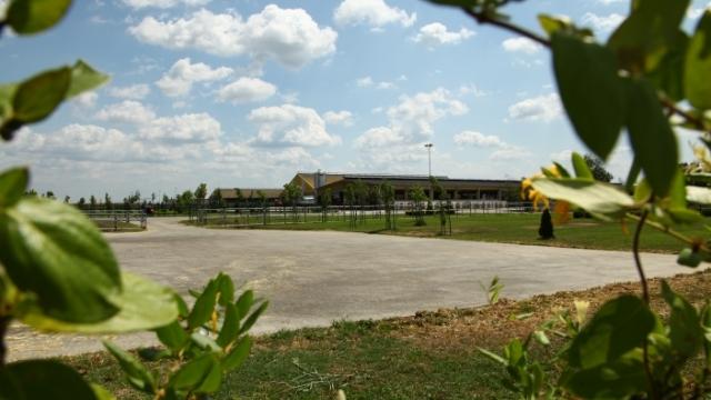 Global Seed - najveća organska farma mlečnih krava u regionu