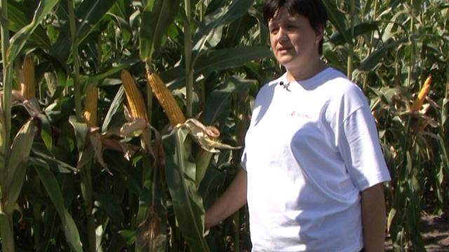 Koliko je ženska ruka bitna u poljoprivredi?