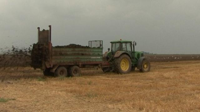 Stajsko đubrivo – najstarija hrana za zemljište