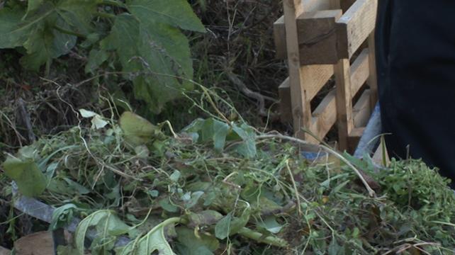 Kompostiranje - najbolji način da iskoristite organski otpad i dobijete organsko đubrivo!