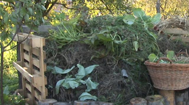 Iskoristite jesenje čišćenje bašte kako biste napravili kompost!