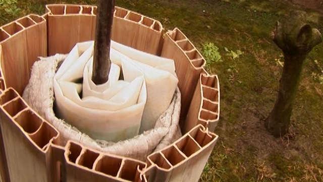 Zaštitite vaše sadnice starom roletnom!
