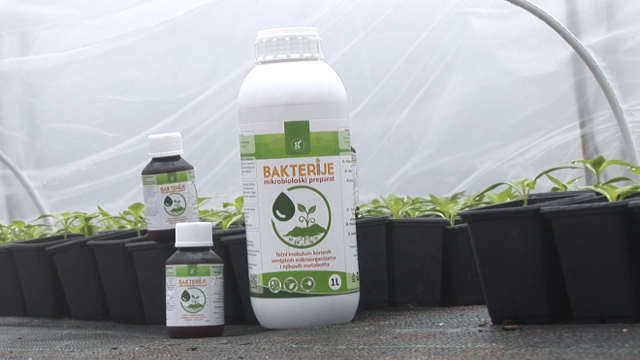 """Kako """"Bakterije"""" pomažu mladim biljkama"""