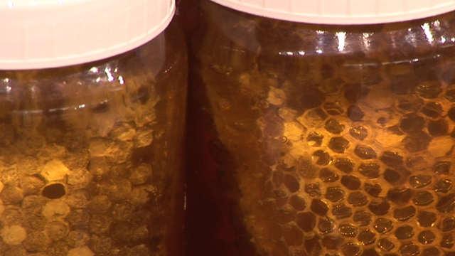 Vesti - Snažna podrška za pčelare u Srbiji!