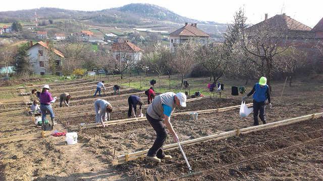 Baštalište – svi urbani poljoprivrednici na jednom mestu!