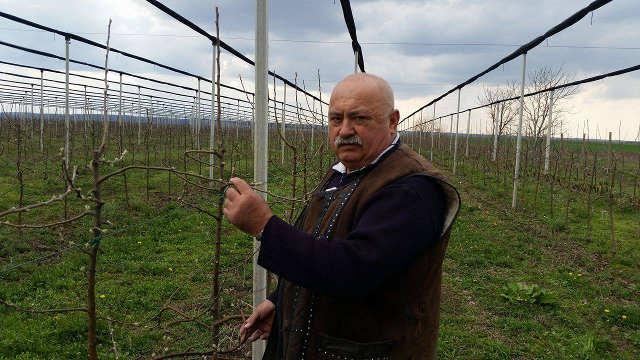 Ovo može samo u Srbiji! Zasadio voćnjak, a sada mu kažu da nije njegov!
