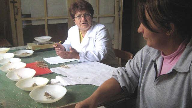Vesti - Kragujevac preuzeo Centar za strna žita – rešen višegodišnji problem najstarije srpske naučne ustanove!