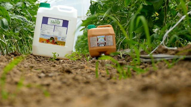 Unistart + Slavol - idealna kombinacija za mlade povrtarske biljke