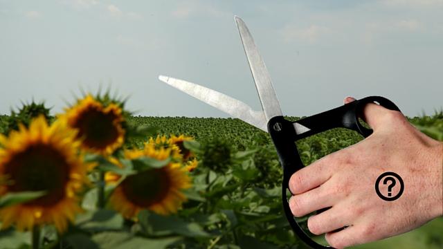 Ko nam kroji poljoprivrednu politiku?