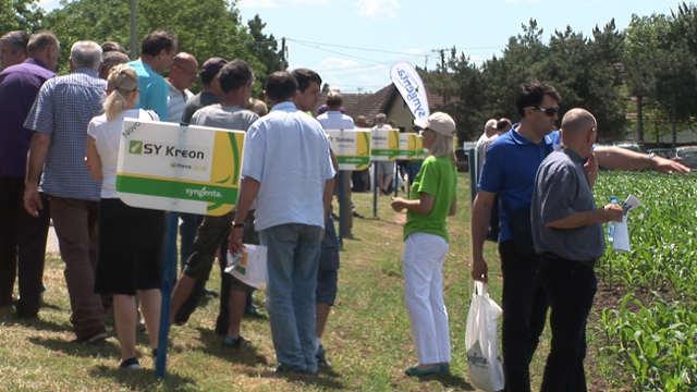 Prenosimo kako je bilo na Syngentinom Danu polja u Bačkom Gradištu!