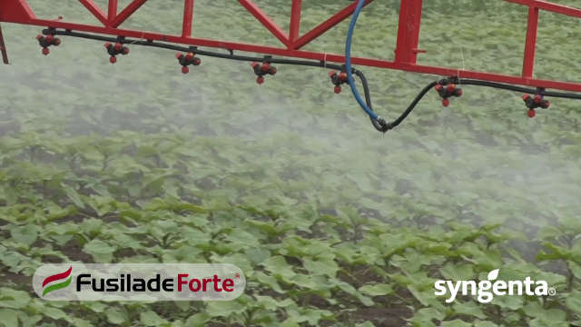 Fusilade Forte® - za njivu bez rizomskih travnih korova!