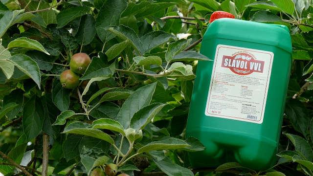 Slavol VVL + Amiksol - za krupne i zdrave jabuke
