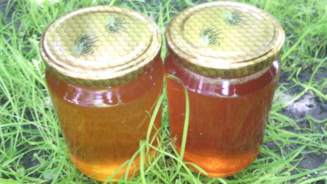 U junu povećajte kontrolu pčelinjih društava