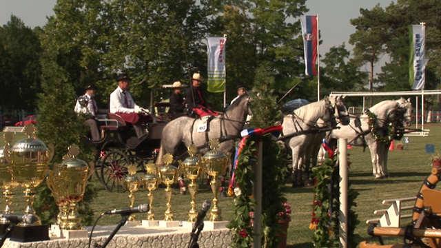 Vesti - Pogledajte kako je bilo na II kolu prvenstva Vojvodine u dvopregu i četvoropregu!