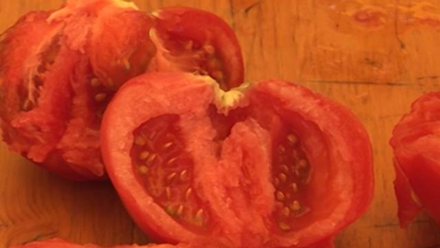 Kako da prepoznate kvalitetan hibrid paradajza?