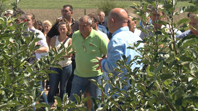 """Vesti - """"Agromarket"""" održao Dan polja u Beloj Crkvi"""