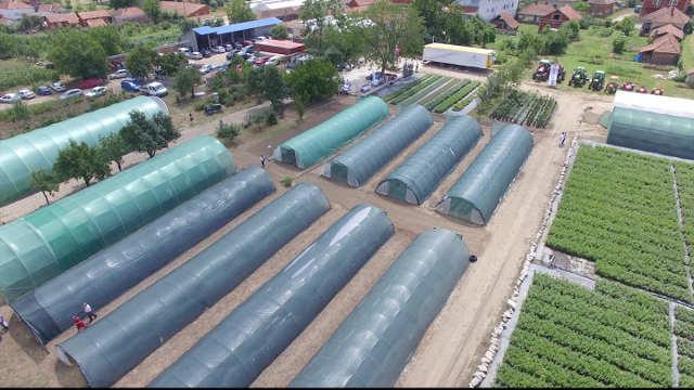 Otkrivamo istorijat kompanije koja se poljoprivredom uspešno bavi s LJUBAVLJU – Superior!