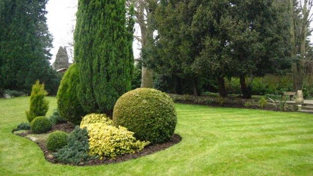 5 pravila za uspešno održavanje travnjaka tokom jeseni