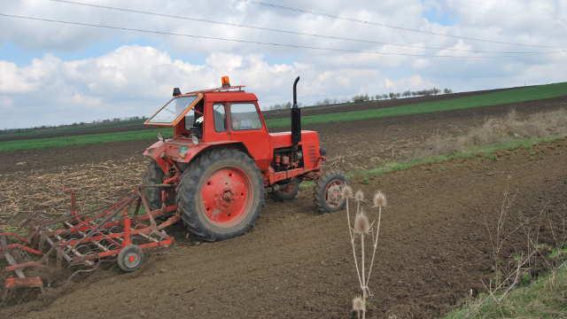 Vesti - Prioriteti Ministarstva poljoprivrede za 2017. godinu