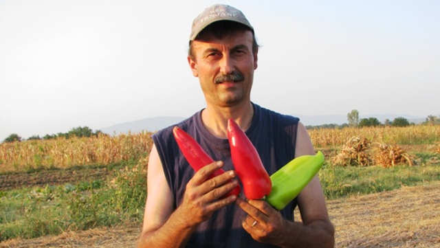 U našem selu svi se bave poljoprivredom - a niko od nje ne živi!