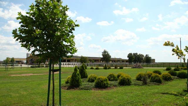 Vesti – Vojvodina podstiče razvoj stočarstva