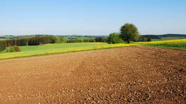 Da li treba da postoje privatne poljoprivredne stručne savetodavne službe?