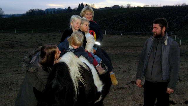 Iz Austrije došli u Šumadiju - hrane se ekološki i jašu konje