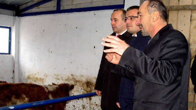 Ministar Nedimović poručio: Treba nam što više goveđeg mesa!