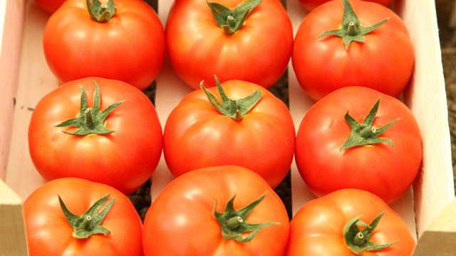 Proizvodnja hrane MOŽE biti perspektivno zanimanje!