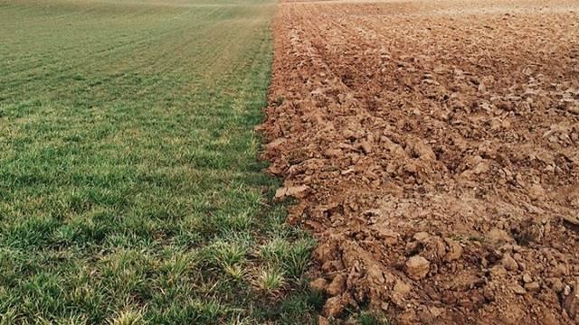 Da li će Srbija uspeti da izbegne prodaju zemljišta strancima?