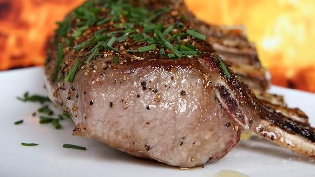 Da li je GMO meso naša budućnost?