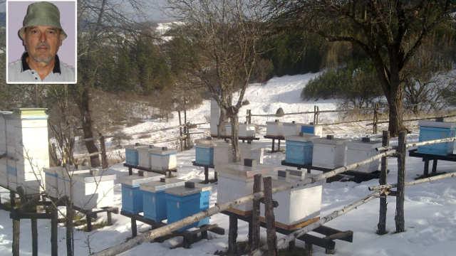 Broj uginulih pčela raste, pčelari zabrinuti