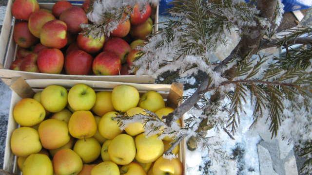Zašto Srbi žive u voćarskom raju?
