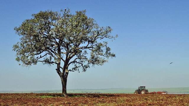 Ove godine bez Sabora poljoprivrednika rekordera
