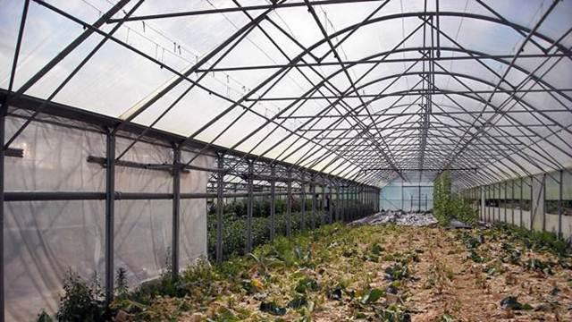 Bespovratna sredstva za sufinansiranje biljne proizvodnje u zaštićenom prostoru