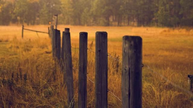 Mali broj žena ima vlasništvo nad poljoprivrednim zemljištem