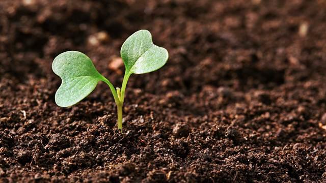 Projekti iz oblasti poljoprivrede ušli u uži izbor za investiciju godine