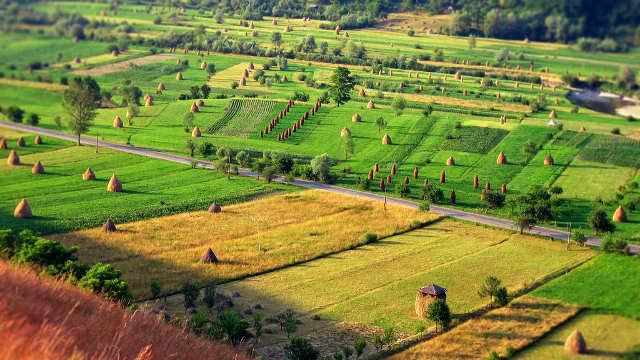 Ovi poljoprivredni proizvodi proslavili su Bugarsku širom sveta