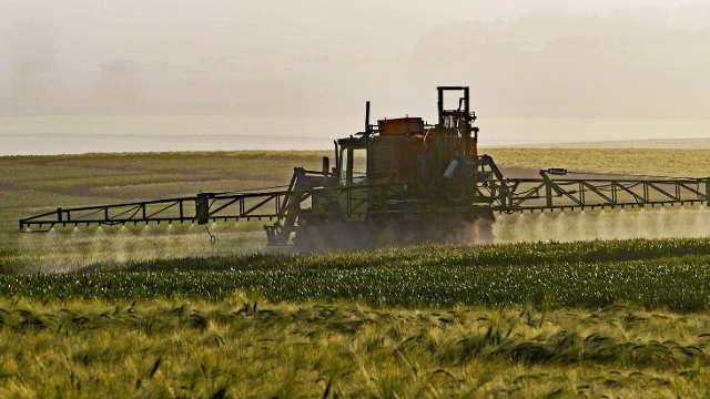 Herbicidi: Loš izbor i primena nanose velike štete biljkama