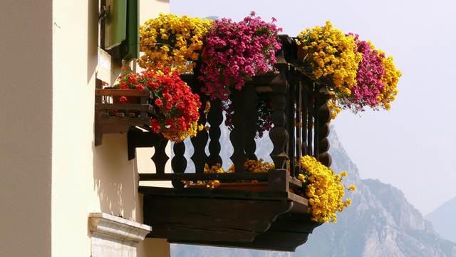 Samo za ljubitelje cveća: Kako da vaša terasa bude najlepša