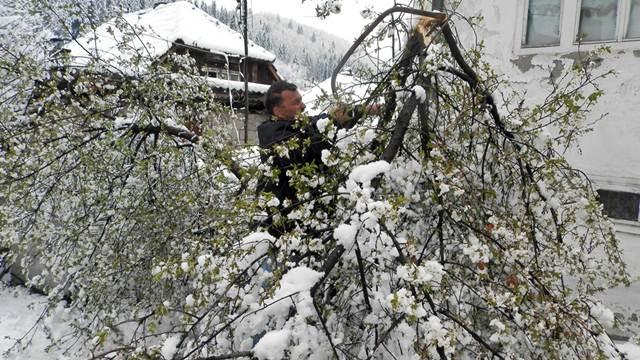 """Aprilski sneg i grad već """"obrali"""" voće u Novoj Varoši"""