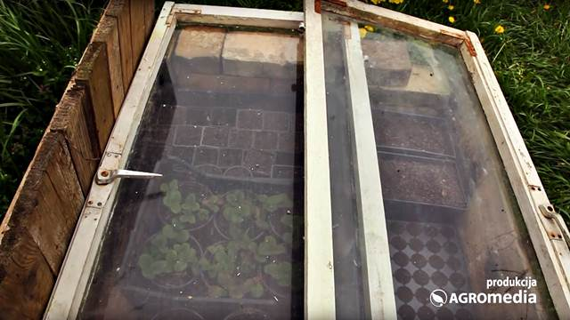 VIDEO VODIČ: Kako da napravite klijarnik za povrće i cveće