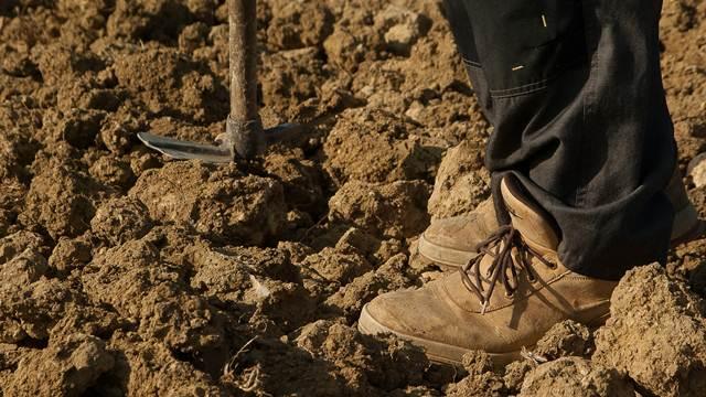 Stiže pomoć: Ponovo radi Poljoprivredna stručna služba u Prokuplju
