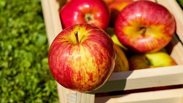Poreska sprečila izvoz 35 tona voća iz Srbije