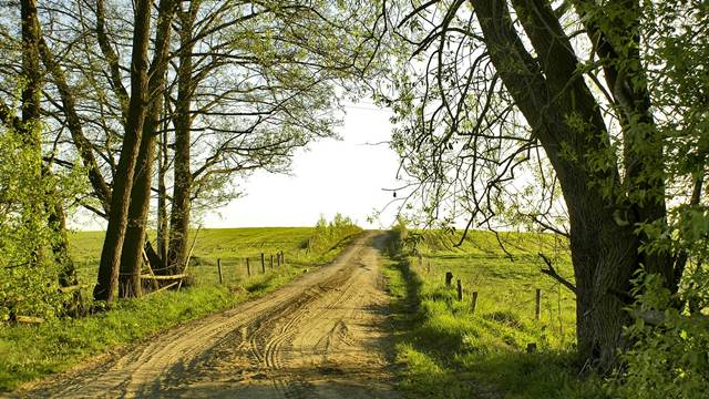 Za uređenje atarskih puteva Vojvodina izdvojila 420 miliona dinara