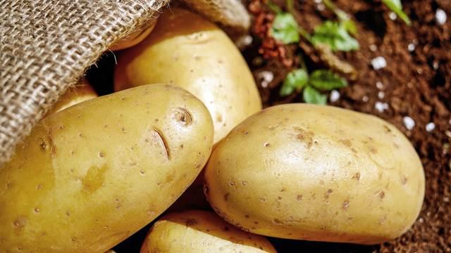 Krompir niko neće da jede, proizvodnja opada