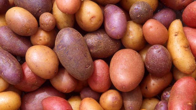 Koji su aktuelni problemi na tržištu krompira u Srbiji?
